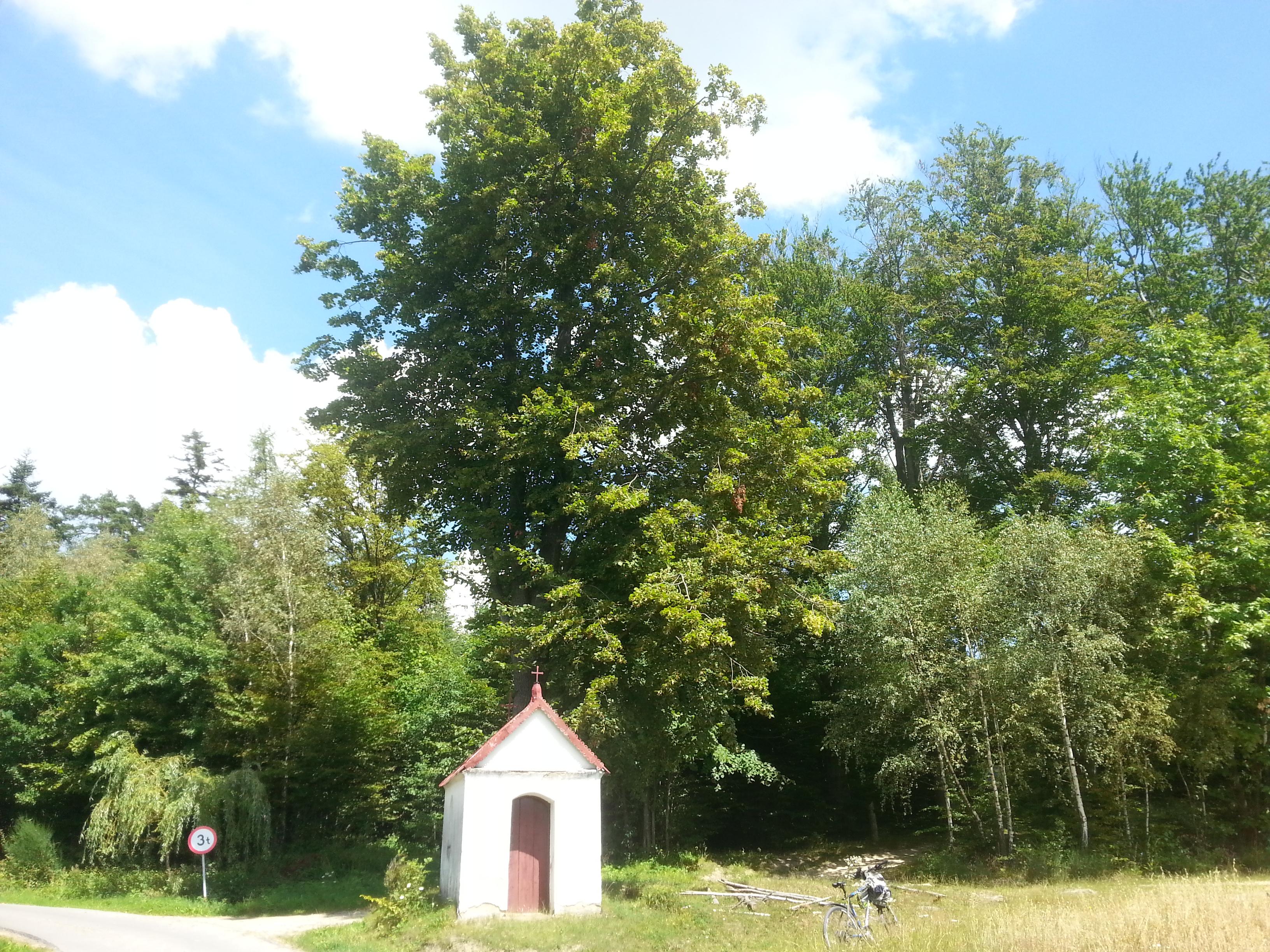 Kapliczka pomiędzy Gwoźnicą a Lecką