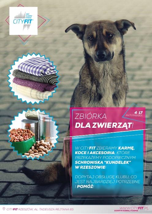 Zbiórka dla zwierząt z CityFit
