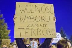 DSC_2910_RZESZOW_NEWS_SEBASTIAN_STANKIEWICZ